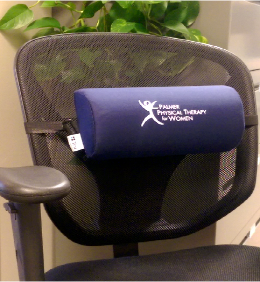 Palmer Physical Therapy lumbar support cushions and pillows while sitting at your desk